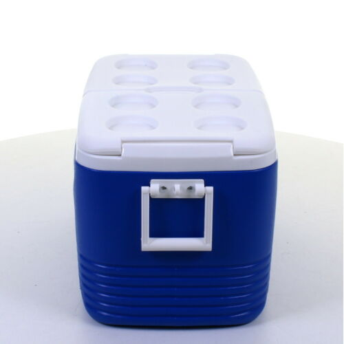 60L COOL BOX PORTABLE COOLBOX INSULATED COOLER ICE FOOD DRINKS TRAVEL CAMPING