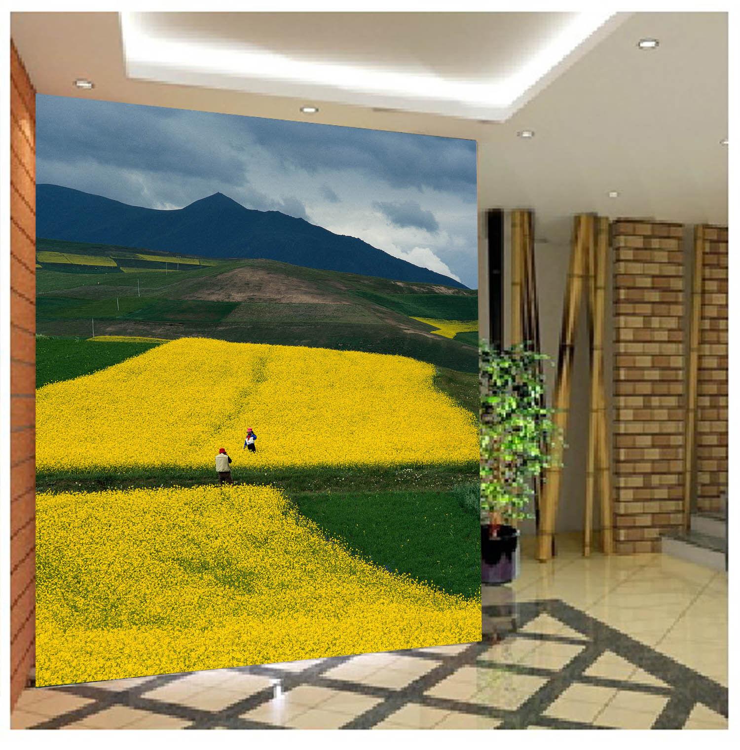 3D oroen Flowers 744 Wall Murals Paper Murals Wall Wall Print Wall Wallpaper Mural AU Kyra 55aae5
