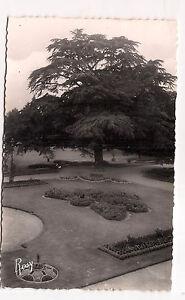 rennes-jardin-du-thabor