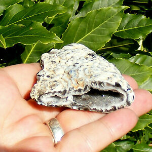 Feather-Agate-Geode-Half-with-Quartz-Crystal-Lined-Cavity-63g-5-5cm-Polished