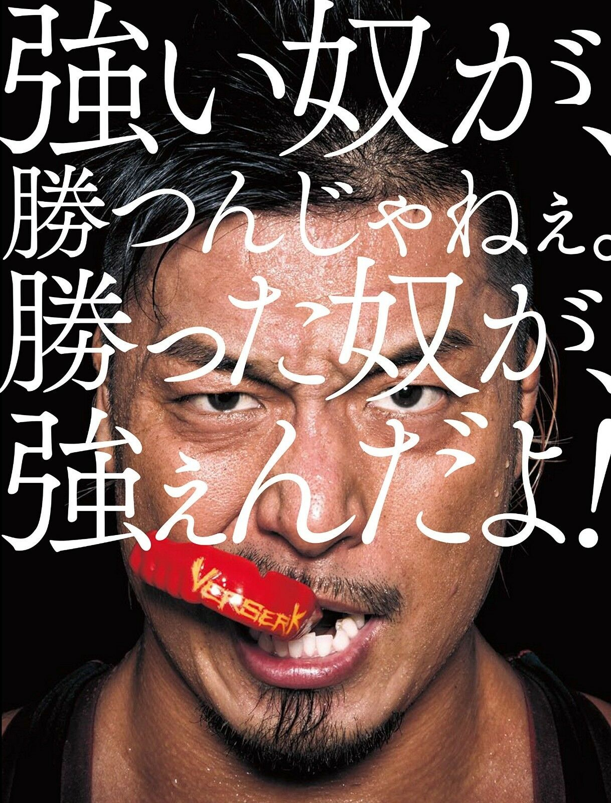 Dragon Gate Japanese Wrestling Photo Collection Book Japan