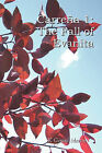 Carre a 1: The Fall of Evanita by K Gerard Martin (Paperback / softback, 2010)