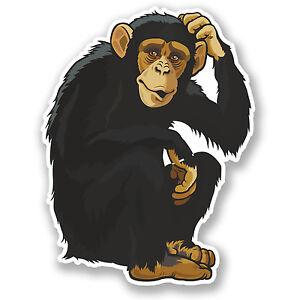 2 x 10cm Monkey Vinyl Sticker iPad Laptop Helmet Car Bike Kids Fun Chimp #5179