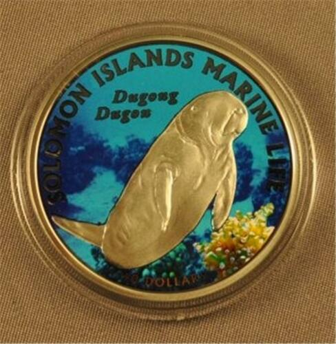 Dugong Dugon 2011 Solomon Islands Ag Manatee