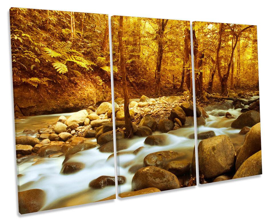River Landscape Scene Forest TREBLE CANVAS Wand Kunst Box Framed Bild