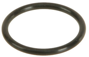 Water Pipe O-Ring K477XP for Rodeo Trooper Axiom Amigo Sport VehiCROSS 1999 2003