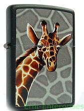 Zippo Giraffe Tiermotiv  2001528 Sturmfeuerzeug American Hardcore  Neu