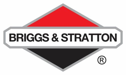 Genuine Briggs /& Stratton 693389 Starter Rope