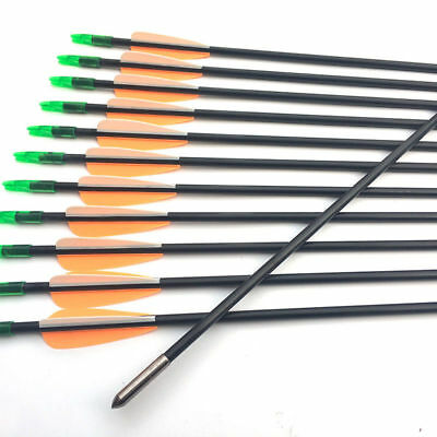 """Complete Arrows Outdoor Sports Honest 12pcs 30"""" Fiberglass Arrows Archery Target Point Bow Practice Hunting Shooting Special Buy"""
