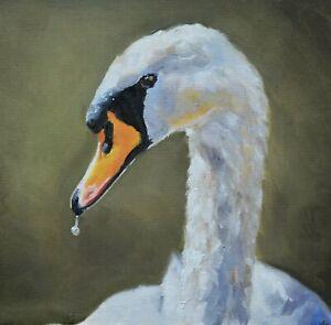 Fine-James-Coates-Original-Oil-Painting-Of-A-Swan-British-Wildlife-Art