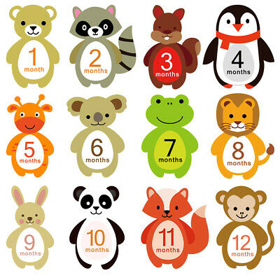 Cute Baby Month Sticker Pregnant Milestone Cards 1-12 Month Bear New 12pcs
