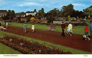 Vintage-Staffordshire-Postcard-Trentham-Gardens-HN0