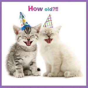 Image Is Loading Kittens Birthday Card How Old Laugh Yourself Silly