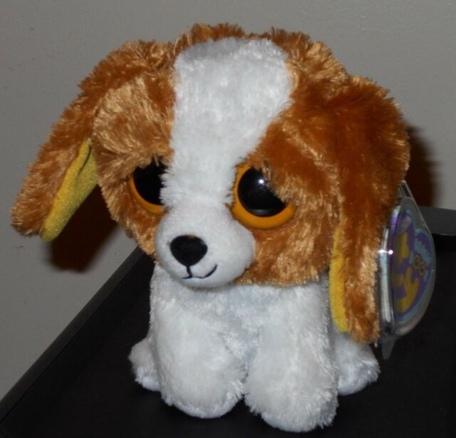T36 Ty Beanie Boos Blossom Lamb Sheep   Cookie Puppy Dog for sale ... 889c81a3a788