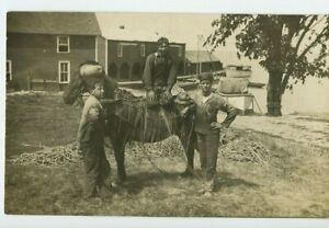Vintage-RPPC-Farmers-or-laborers-at-work-Horseback