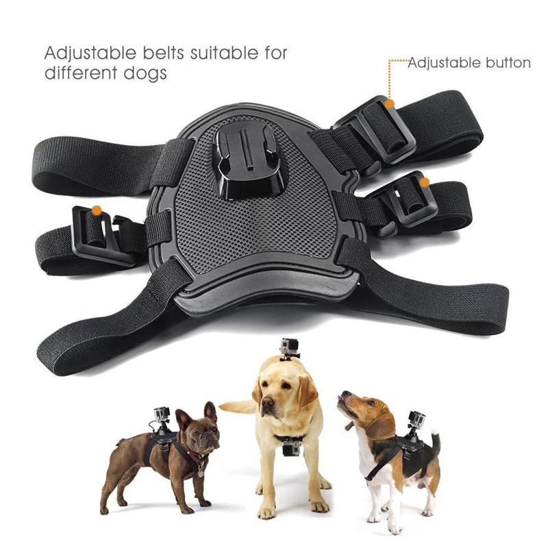 Outdoor Pet Supply Dog Harness Sport Action Camera Elastic Back Chest Strap Belt
