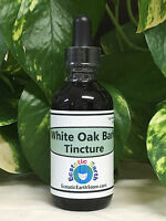 White Oak Bark Tincture Extract Organic Quercus Alba Herb Ecstatic Earth