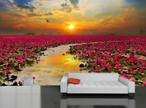 Lotus Flower Thailand Photo Wallpaper Wall Mural Decor Paper Poster
