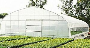 Image Is Loading 5year Agfabric Greenhouse Plastic Film Covering Uv Protected