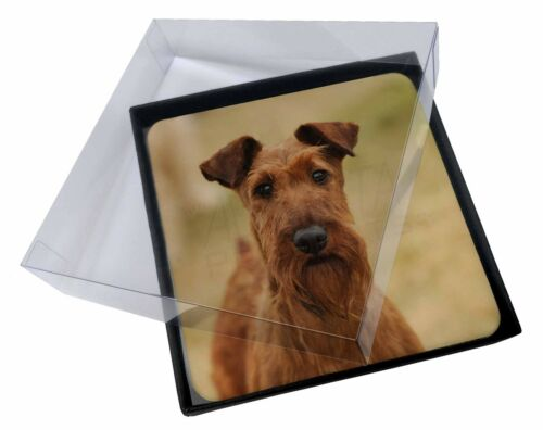 4x Irish Terrier Dog Picture Table Coasters Set in Gift Box AD-IT1C
