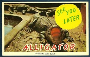 See You Later Alligator - A Florida Salute | eBay