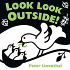 Look Look Outside! by Peter Linenthal (Board book)