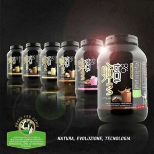 Net VB Supplements Whey 104 9.8 1980 gr hydrolysed protein isolates Various Flavors