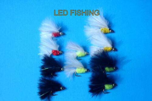 119 10 x ASSORTITI shortshank goldhead Cats Whisker Fishing Flies Taglia 12