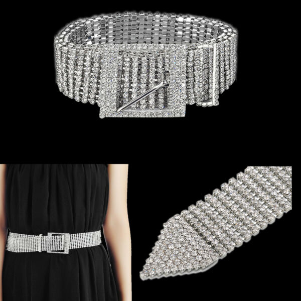 10 Fila Estrás Pedrería Mujer Cinturón Metal Plateado Elegante Moda Fiesta