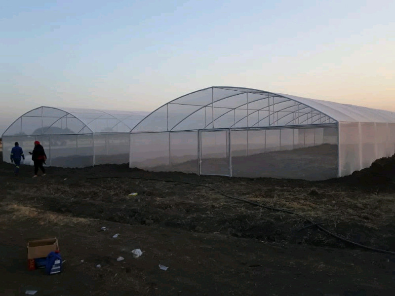 Greenhouse construction and  irrigation