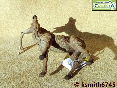 Nuevo CollectA Red Deer Stag Juguete Animal Salvaje Zoológico De Plástico Sólido