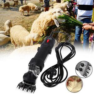 320W Tondeuse pour Animal électrique Professionnelle Mouton Animaux