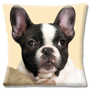 Details about NEW FRENCH BULLDOG close up head BLACK WHITE ON CREAM 16