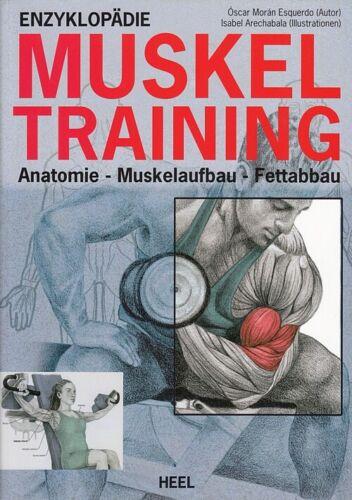Esquerdo Krafttraining-Buch Anatomie-Muskelaufbau-Fettabbau Muskel-Training
