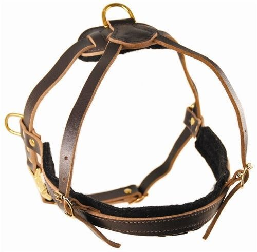 al prezzo più basso Dean & Tyler Tyler Tyler The Cowboy Leather Tracking Pulling Dog Harness with Brass Hardware  stile classico