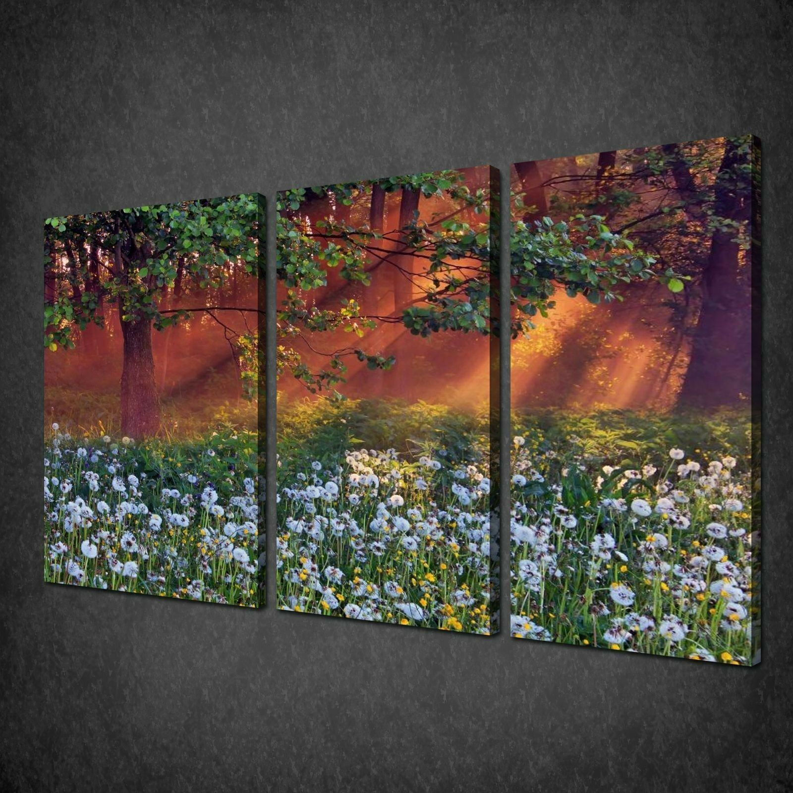 DANDELIONS IN THE WOOD SUNSET 3 PANELS CANVAS PRINT PICTURE READY TO HANG