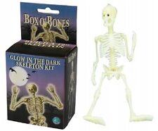 Glow in the Dark Human Skeleton Model Kit Halloween Box of Bones Decoration Toy