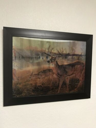 5D Photos Deer 14*18 Inches New Flipping Technology 3 pictures In 1 Frame