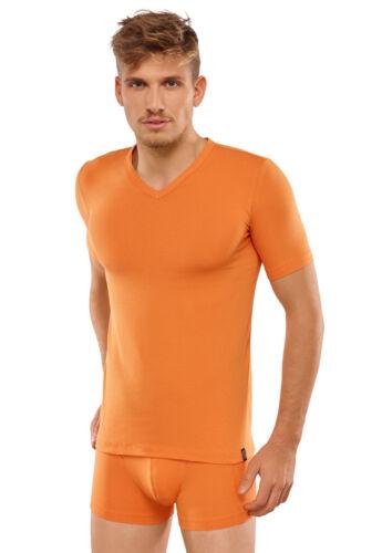 Schiesser 95//5 caballeros V-shirt bajo desenfunda camisa bajo camisa t-shirt ropa interior 5-8