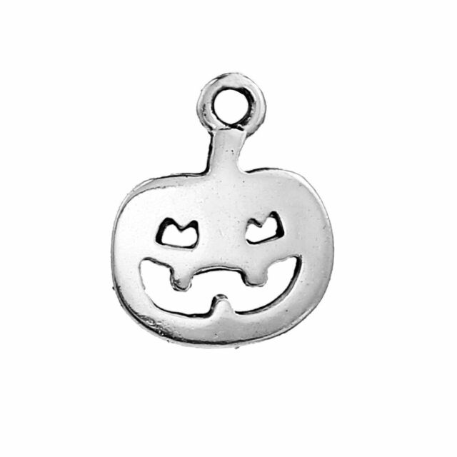 Lion ZX02955 - Charming Beads Packet of 10 x Antique Silver Tibetan 23mm Charms Pendants -