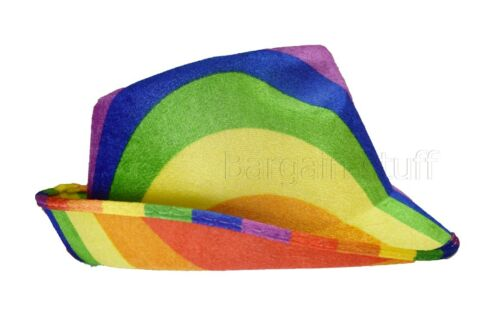 Fancy Cowboy Hat   Look Wild West  Hats Rainbow Colour Free and Fast Delivery