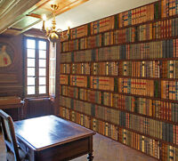 Library Bookcase Bookshelf Old Classic Books Photo Wallpaper Wall Mural 335x236