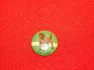VINTAGE-PINBACK-BUTTON-IRISH-TERRIER