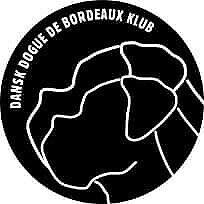Dogue de bordeaux, hvalpe, 8 uger