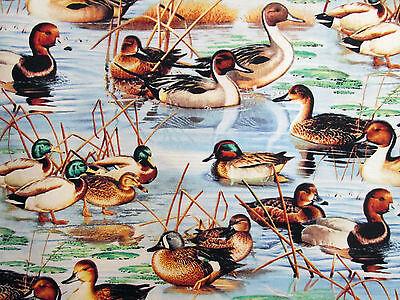 2 Yards ~ Duck Duck Goose Geese Wildife Birds Scenic Wilmington Prints #3104