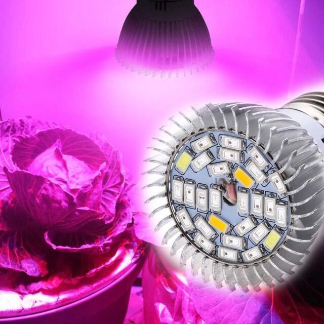 28W Full Spectrum E27 Led Grow Light Growing Lamp Light Bulb For Flower Plant Jм
