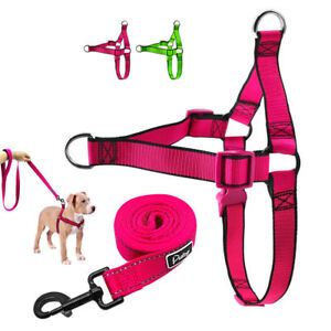 Nylon-No-Pull-Dog-Harness-and-Leash-Front-Leading-No-Choke-Pet-Vest-for-Dogs-M-L