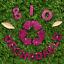 Hemway-Eco-Friendly-Craft-Glitter-Biodegradable-1-40-034-100g thumbnail 95