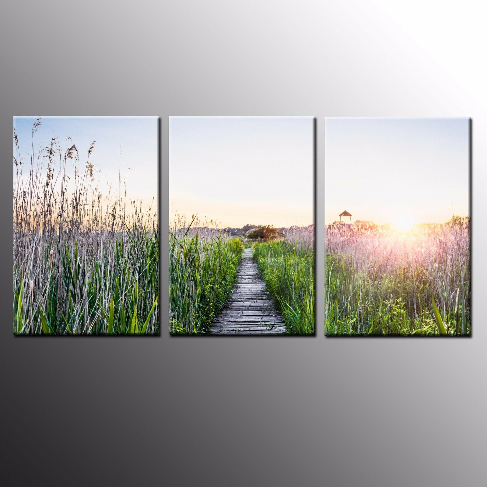 FRAMED HD Canvas Art Prints Wall Art Grass Path Home Printed Painting Art-3pcs