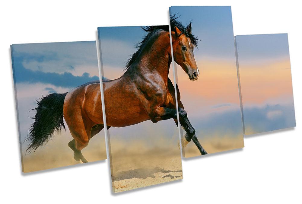 Horse Gallop Stallion Bild MULTI CANVAS Wand Kunst Drucken